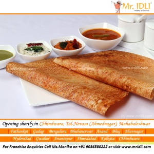 Delicious Dosa from Mr.Idli Pure Veg South Indian Restaurant!